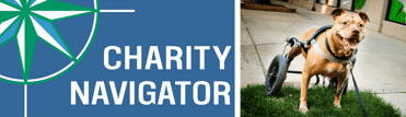 Collage of Charity Navigator logo and Red