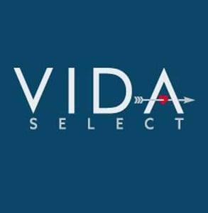 The VIDA logo