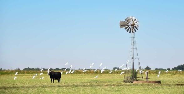 Photo of Vernon, Texas