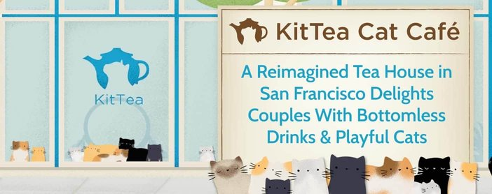 KitTea Cat Café: A Reimagined Tea House in San Francisco Delights Couples With Bottomless Drinks & Playful Cats
