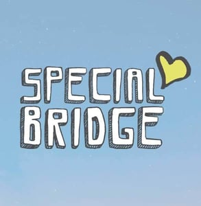 The Special Bridge logo