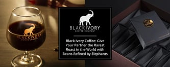 Black Ivory Coffee: Give Your Partner the Rarest Roast