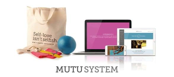 Screenshot of MUTU System package