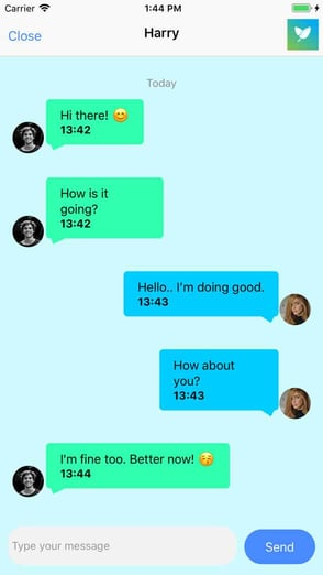 Screenshot from Veggly app chat