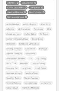 Screenshot of HM tags