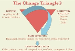 Photo of the Change Triangle