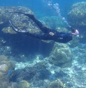 Photo of Lola swimming