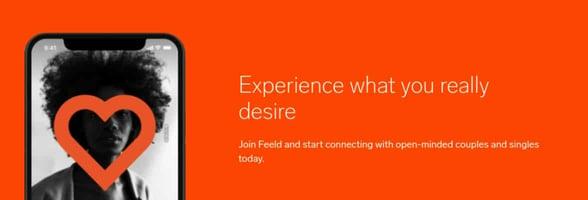Screenshot of Feeld