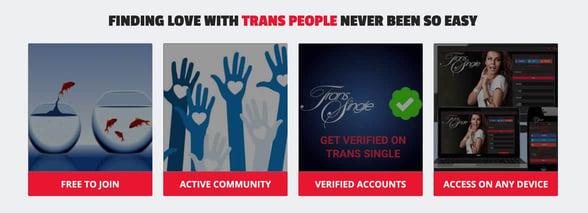 Screenshot from TransSingle website