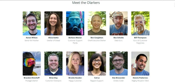 A picture of Olarkers