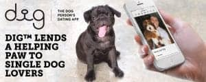 Dig™ Lends a Helping Paw to Single Dog Lovers