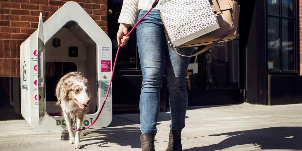 Photo of someone picking up their dog from a DogSpot