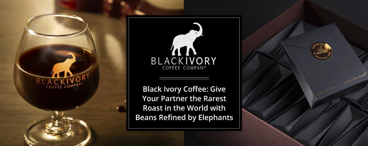 Black Ivory Coffee: Give Your Partner the Rarest Roast in the World with Beans Refined by Elephants