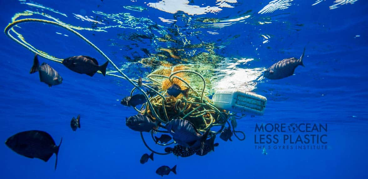 Photo of floating plastic in the ocean