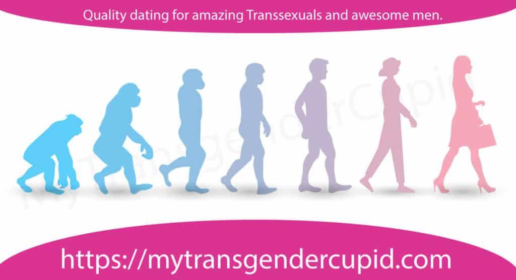 MyTransgenderCupid graphic